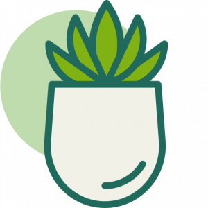 Icono plantas crasas y suculentas